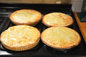 preserving apples apple pie growing organic apples