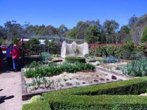 mulched vegetable garden mulching your garden sugar cane mulch veggie patch