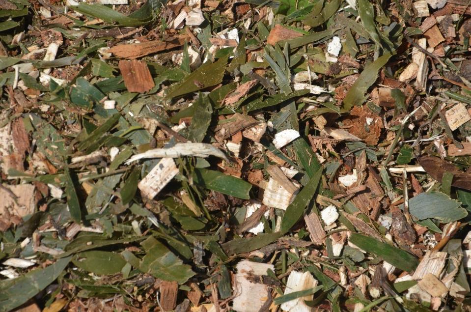 wattle mulch