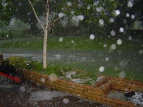 hail storm garden damage hail damage protecting your garden from hail